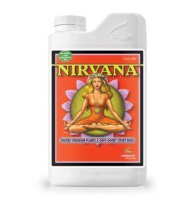 nirvanaa