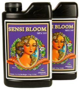 p-3016-sensi_bloom-450x450
